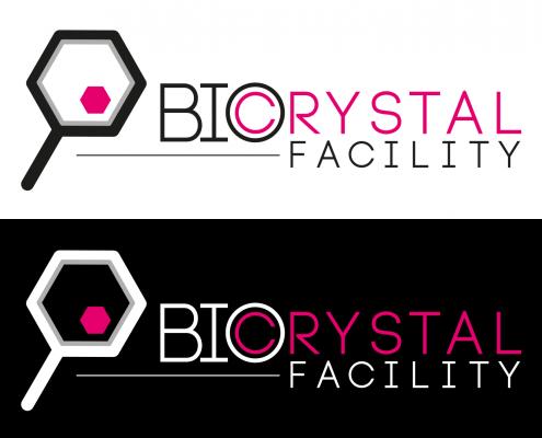BIOCRYSTAL FACILITY facility di Sapienza e CNR