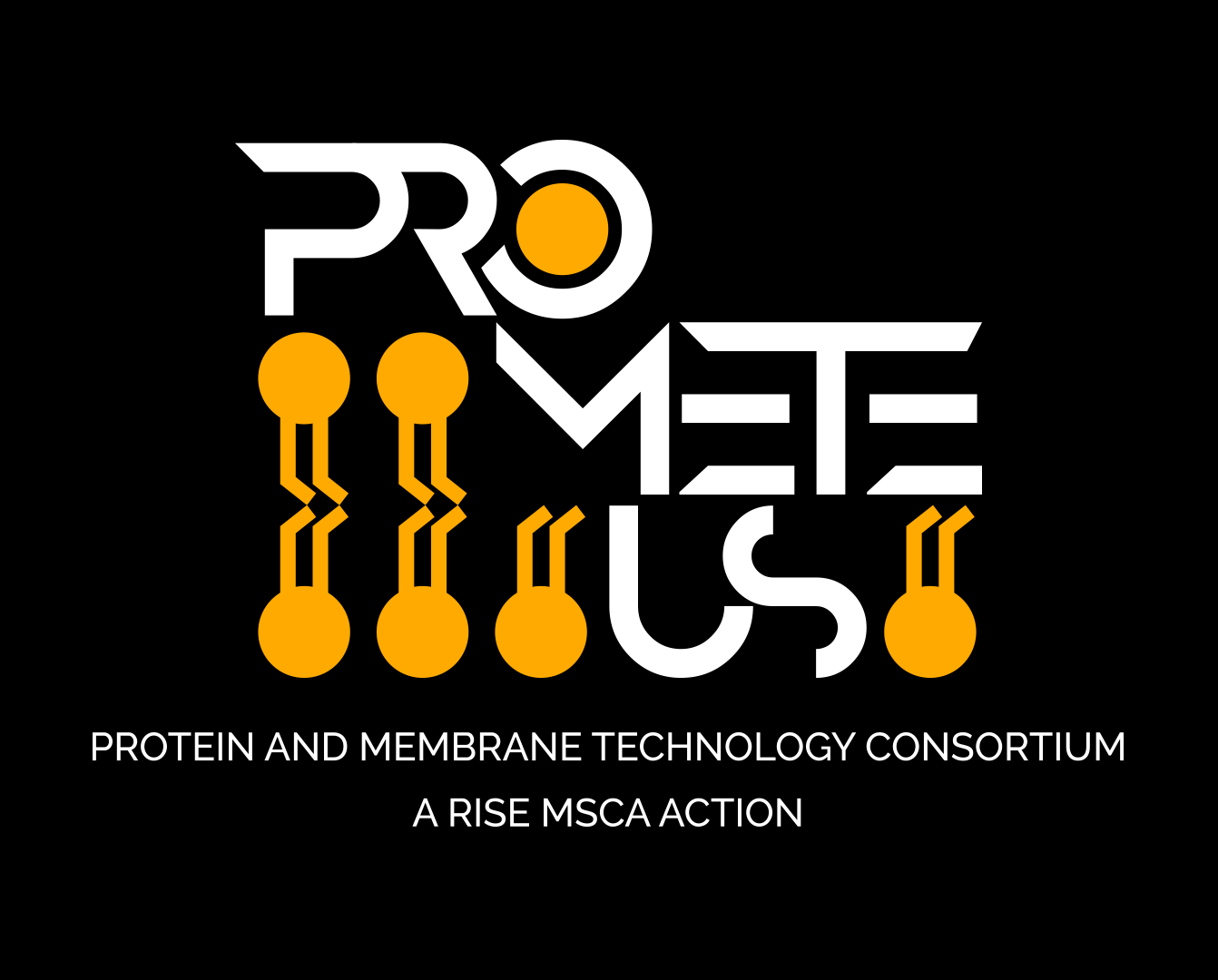 Logo Prometeus: Protein and Membrane Technology Consortium a RISE MSCA Action